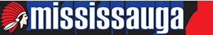 miss-metro-logo